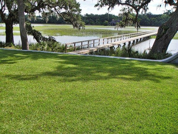 Sod Sales & Sod Installation in Charleston SC