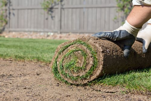 Installation Tips for Grass Sod in South Carolina